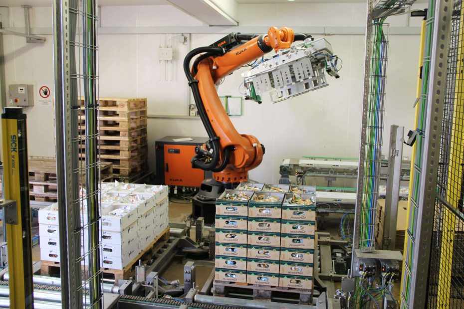Paletizatory M.A.S. Automation 6 1
